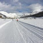 Kuvituskuva, hiihtäjiä
